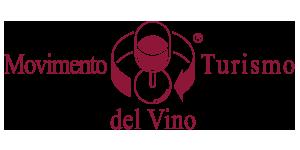 Turismo del Vino - logo